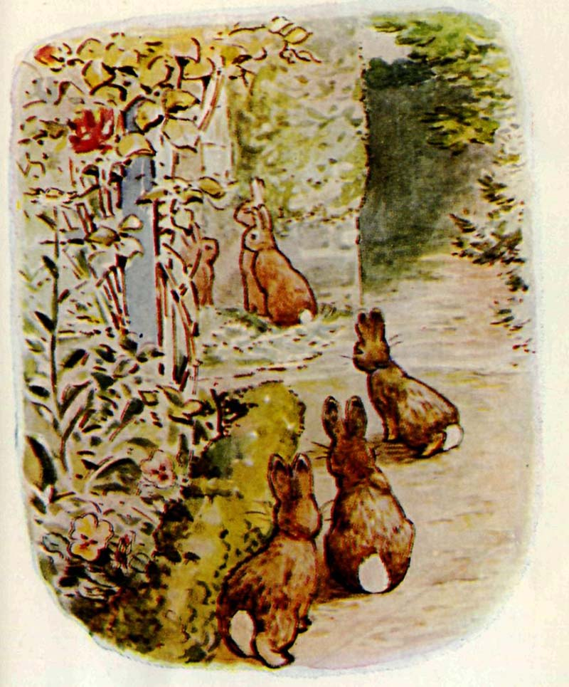 """he Beatrix Potter book """"The Tale of The Flopsy Bunnies"""","""