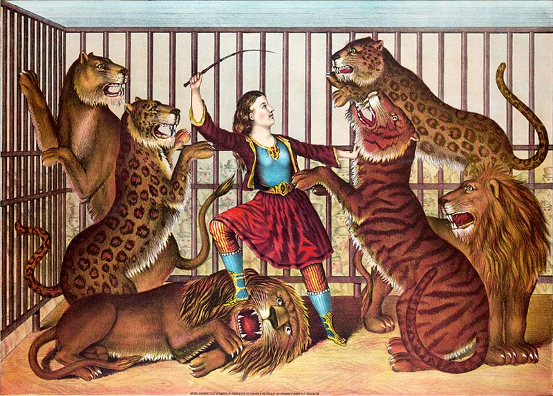 Female lion tamer
