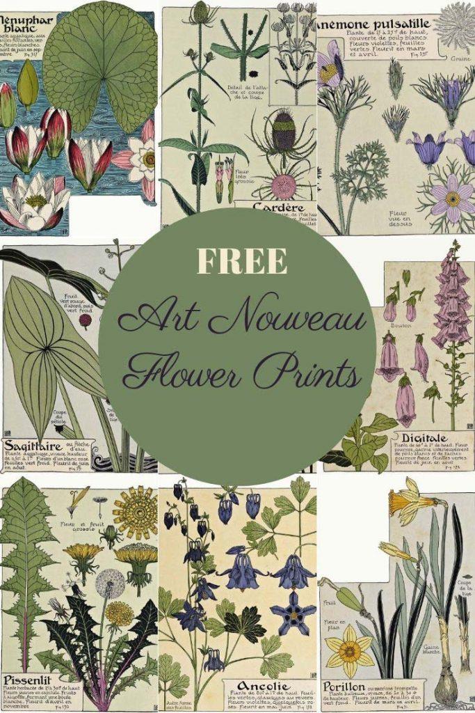 Free art Nouveau flower prints