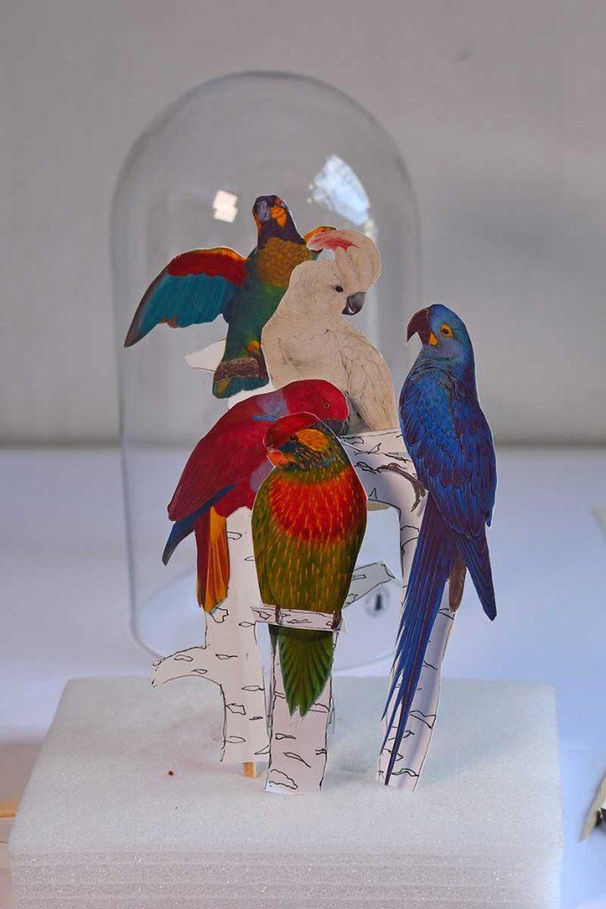 parrot decor arrangement