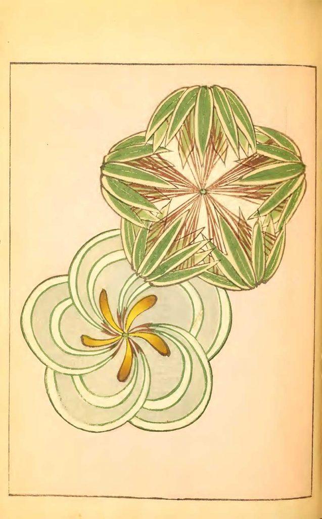 2 flower patterns