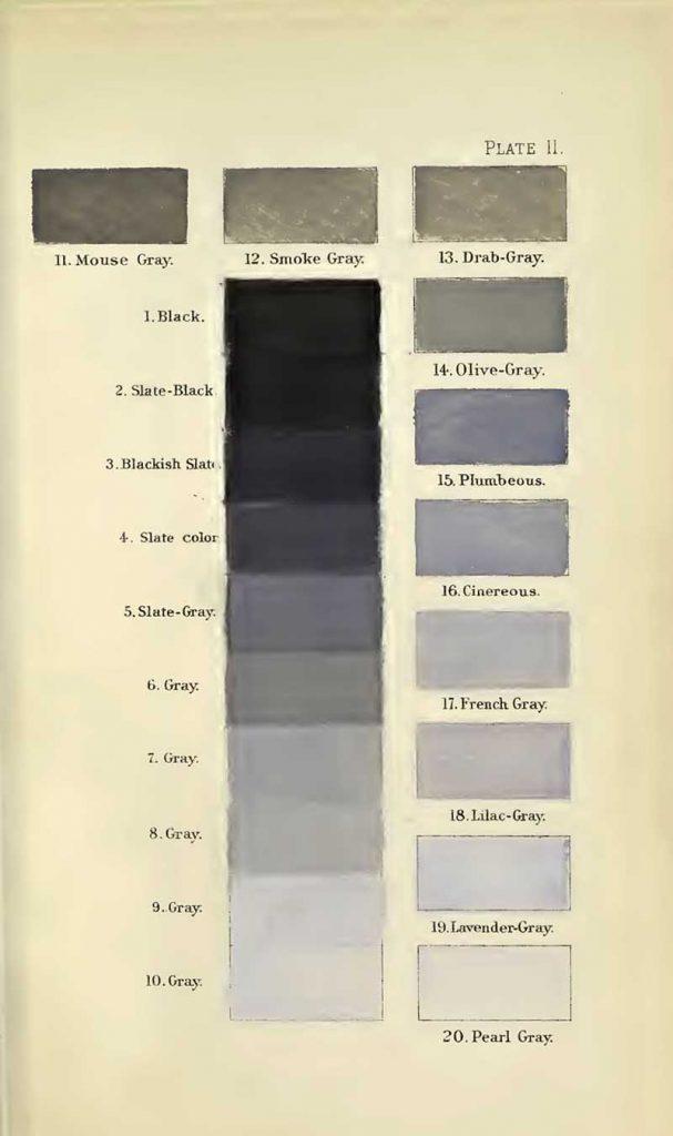Vintage color chart grey