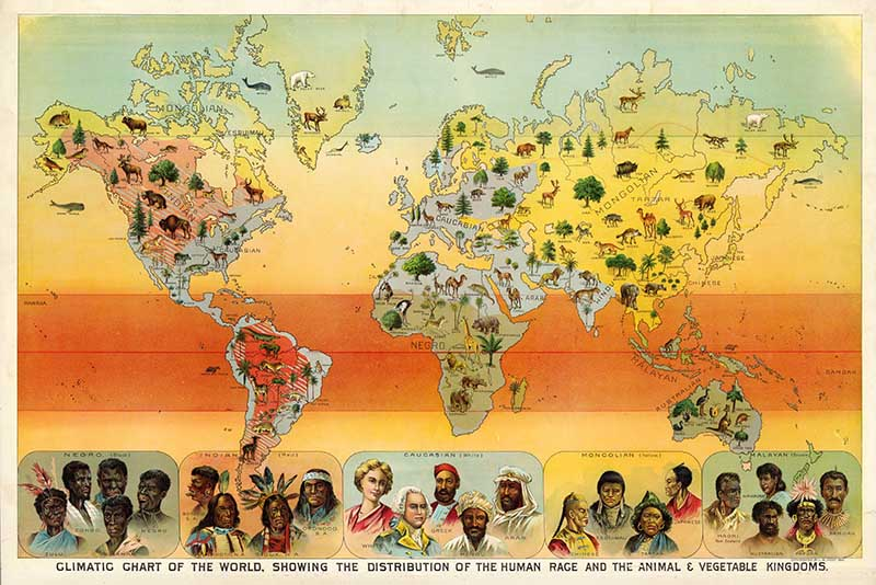 Geography poster climate chart