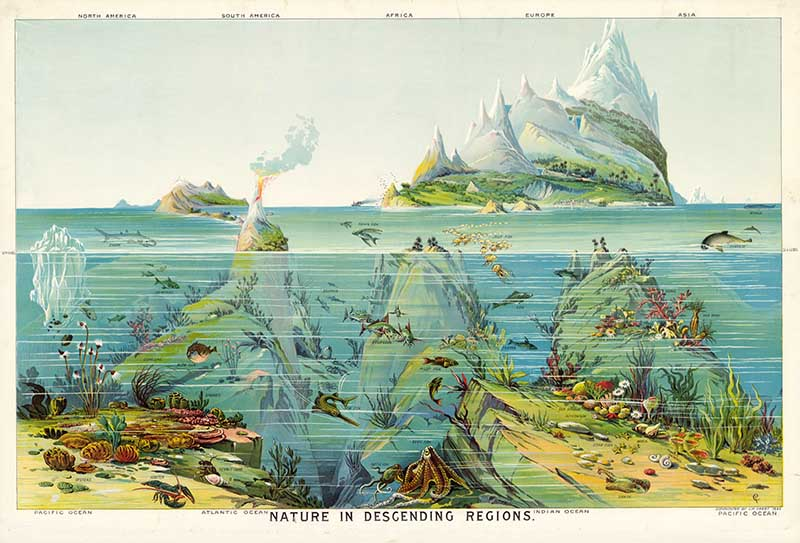 Geography poster of worlds oceans