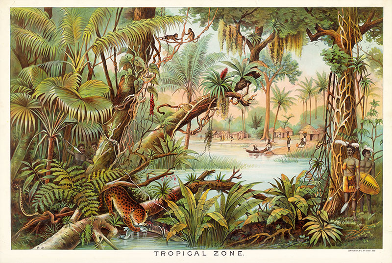 Tropical zone