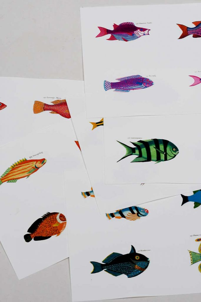 Printed rainbow fish pictures on watercolor paper