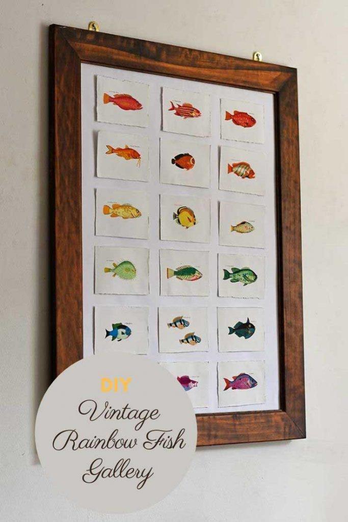 Rainbow fish gallery wall