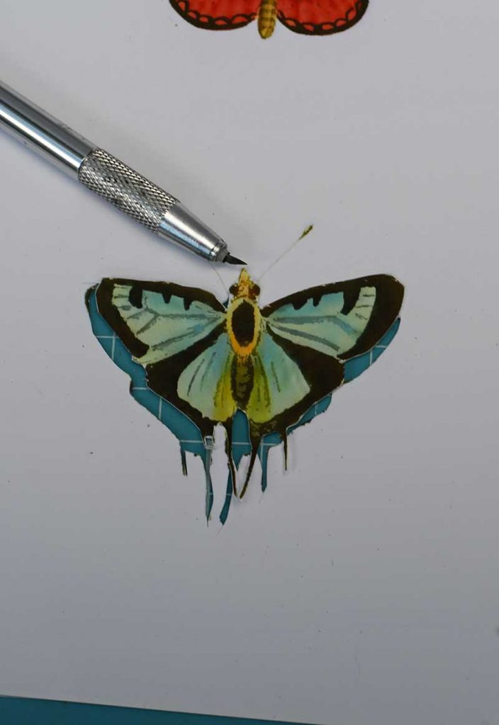 Cutting out the butterfly