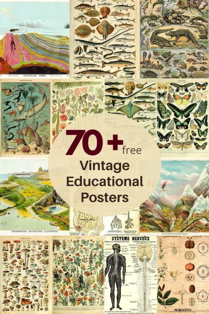 70 plus free vintage educational posters collection