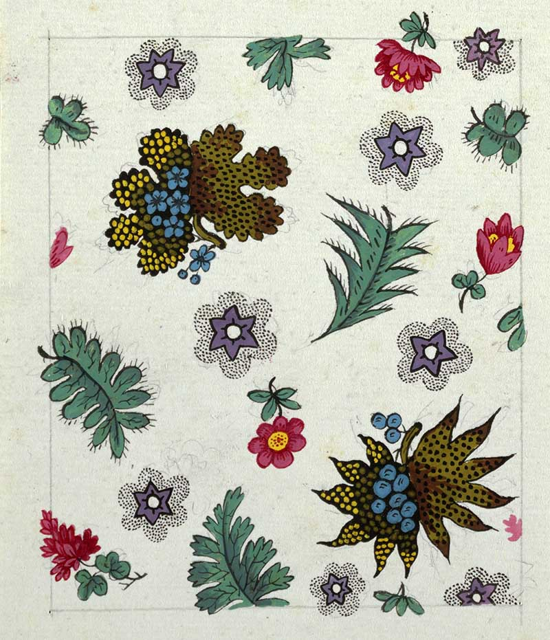 Fern-like leaves, small red flower, purple star-shaped flowers surrounded by black-dotted pattern.