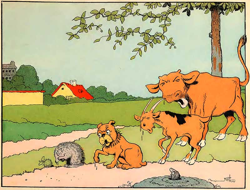 vintage childrens animal illustrations