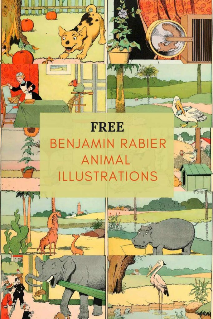 Vintage Benjamin Rabier Animal Illustrations
