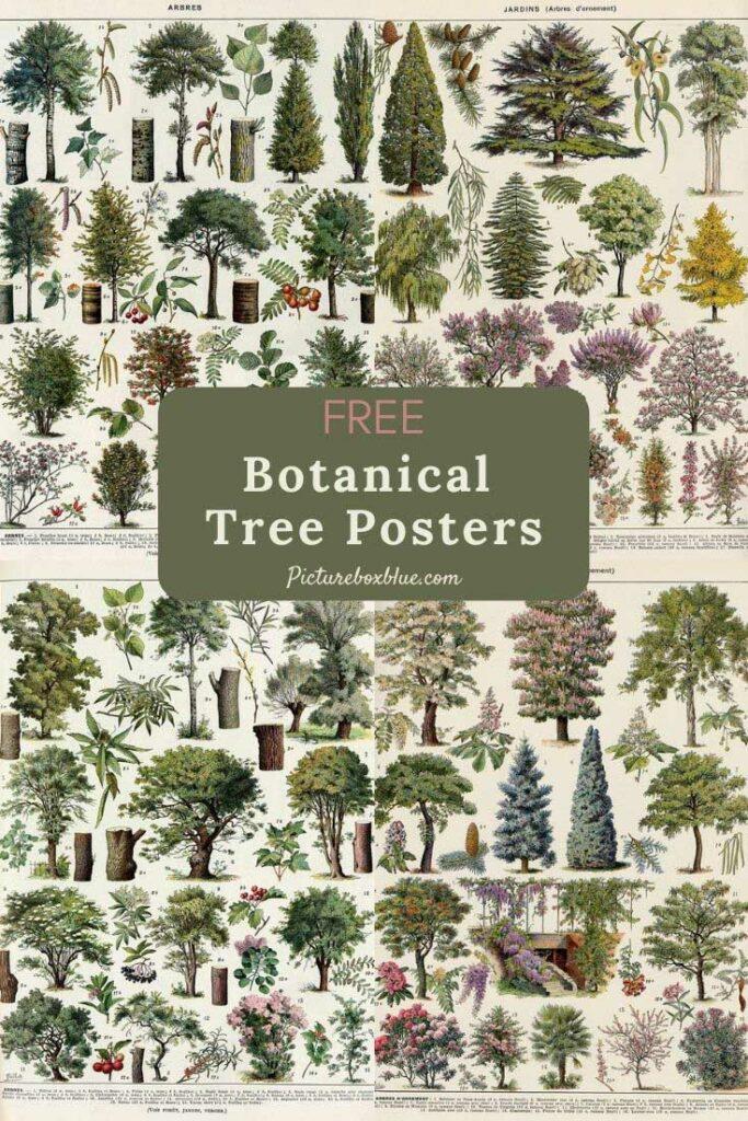 free-vintage-tree-posters