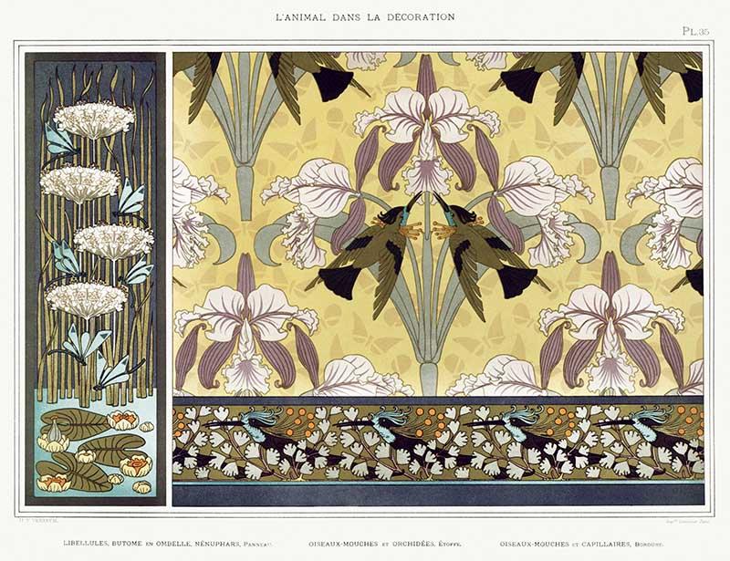 Maurice-Pillard-Verneuil- flybirds-orchids