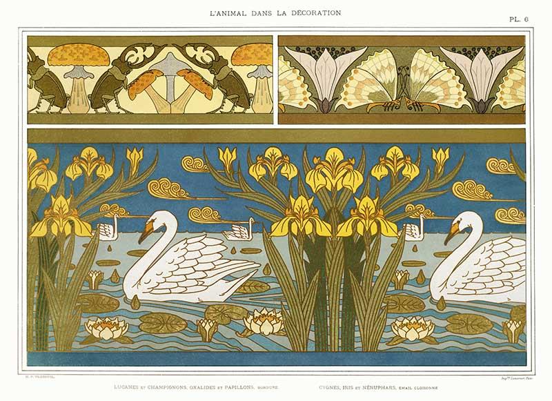 Swans and Mushrooms