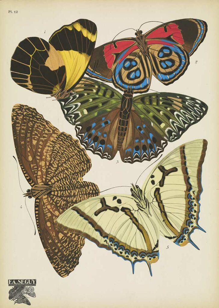 Papillons pochoir prints