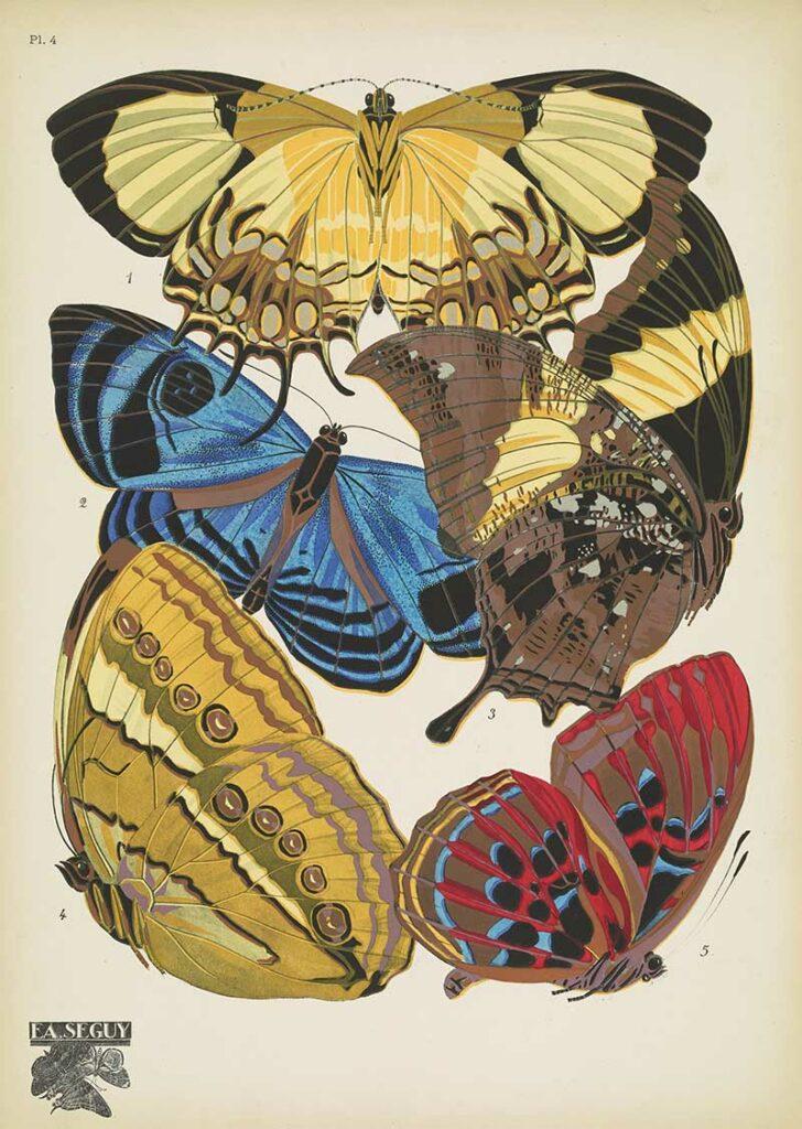 Seguy Pochoir Prints