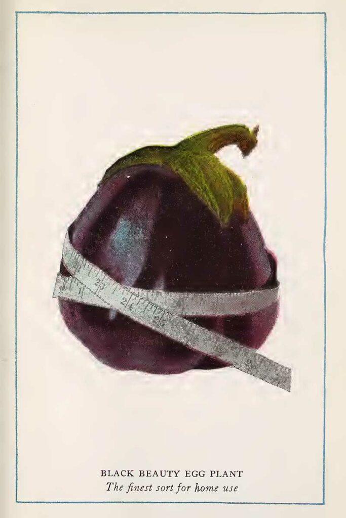 Eggplant vegetable prints